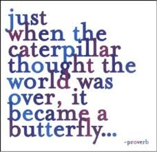 Caterpillar quote
