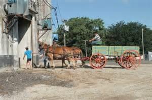 Mule wagon 1